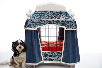 Our dog, Bartley, with the Villa Royale Pooch Penthouse. Performance fabrics by Crypton.